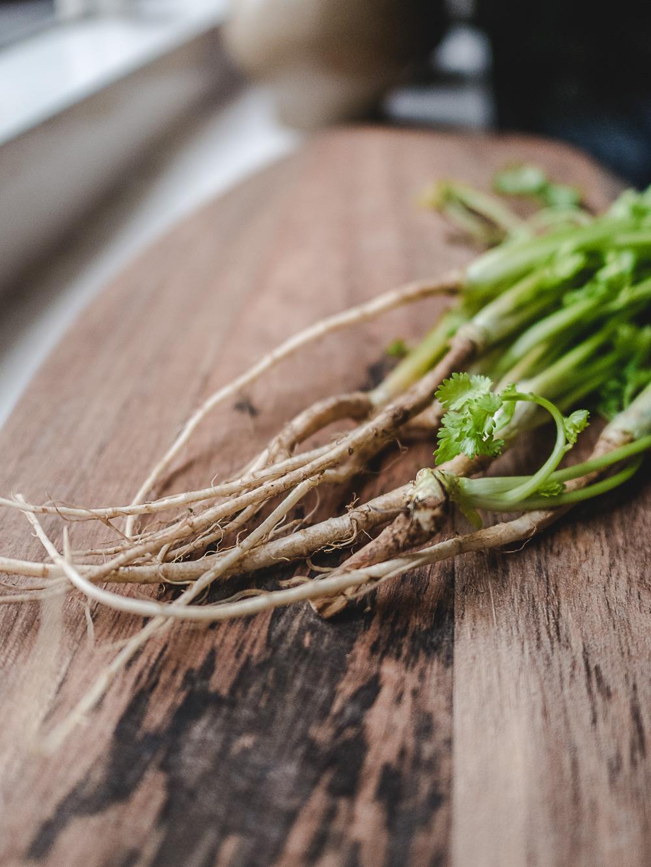 Koriander met wortels op een houten plank. Van de korianderplant gebruik je niet alleen de blaadjes, steeltjes maar ook de kruidige korianderwortel is een heel goede toevoeging aan je gerechten.