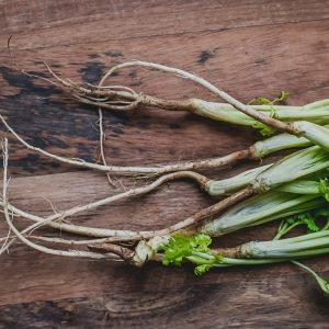 Korianderwortel voor Thaise recepten