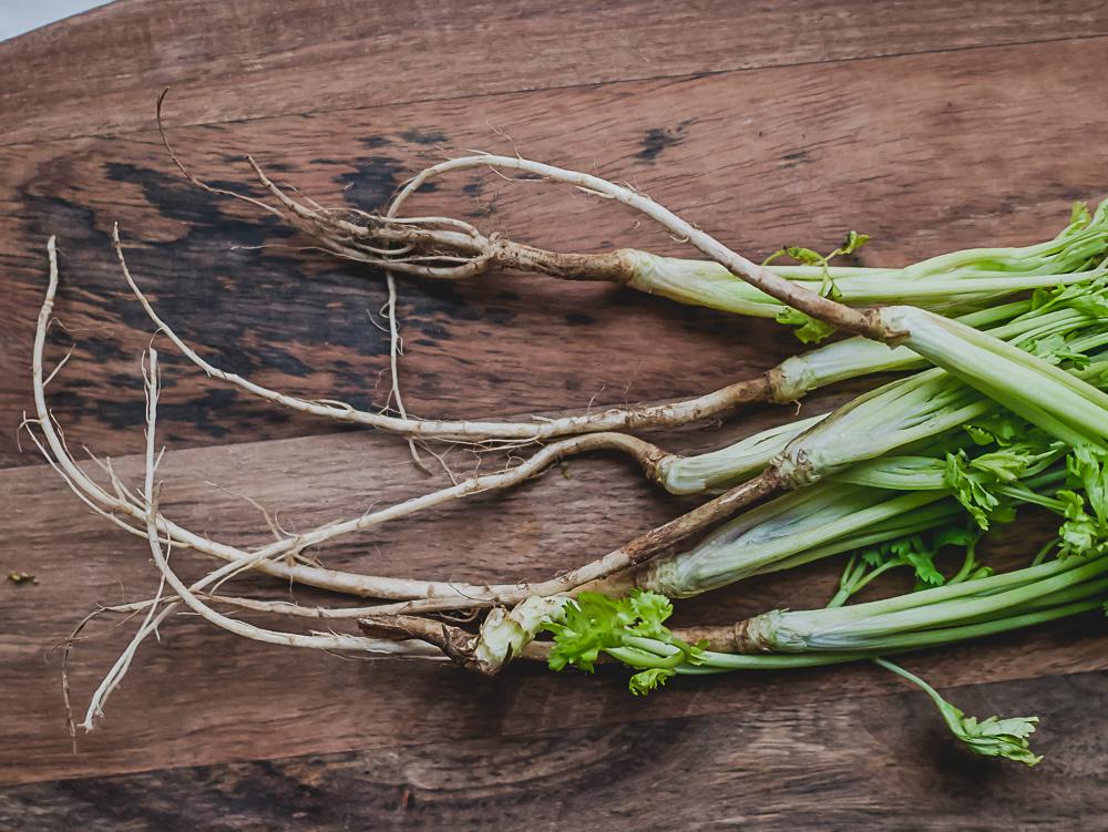 Korianderwortels op een bruine plank voor homemade vegan groene currypasta.